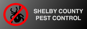 Shelby Co. Pest Control